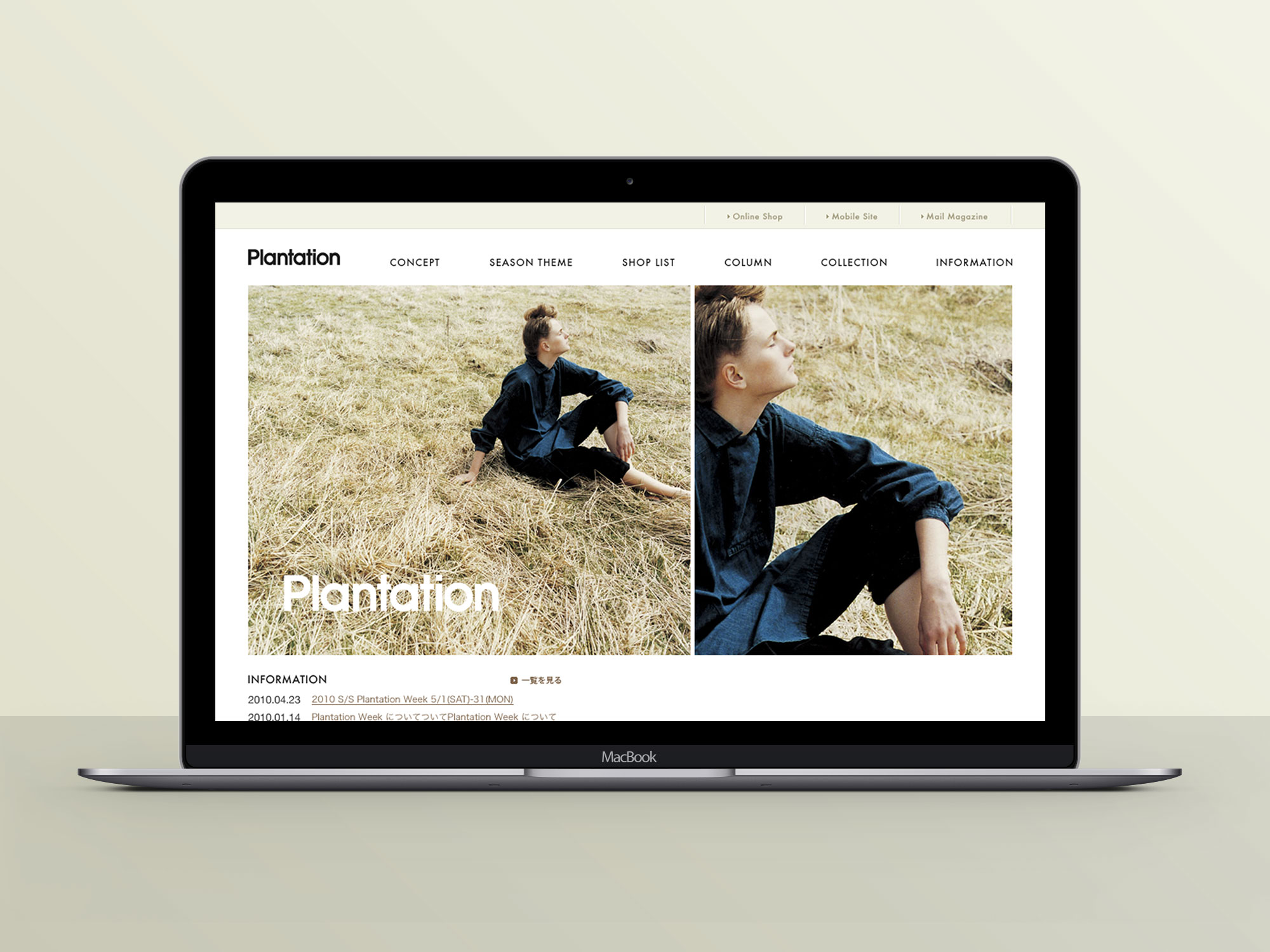 Plantation Web Design